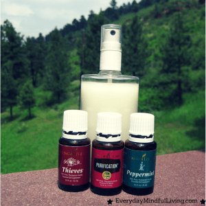 Homemade All-Natural Insect Deterrent