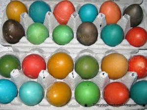 Spring Egg Fun