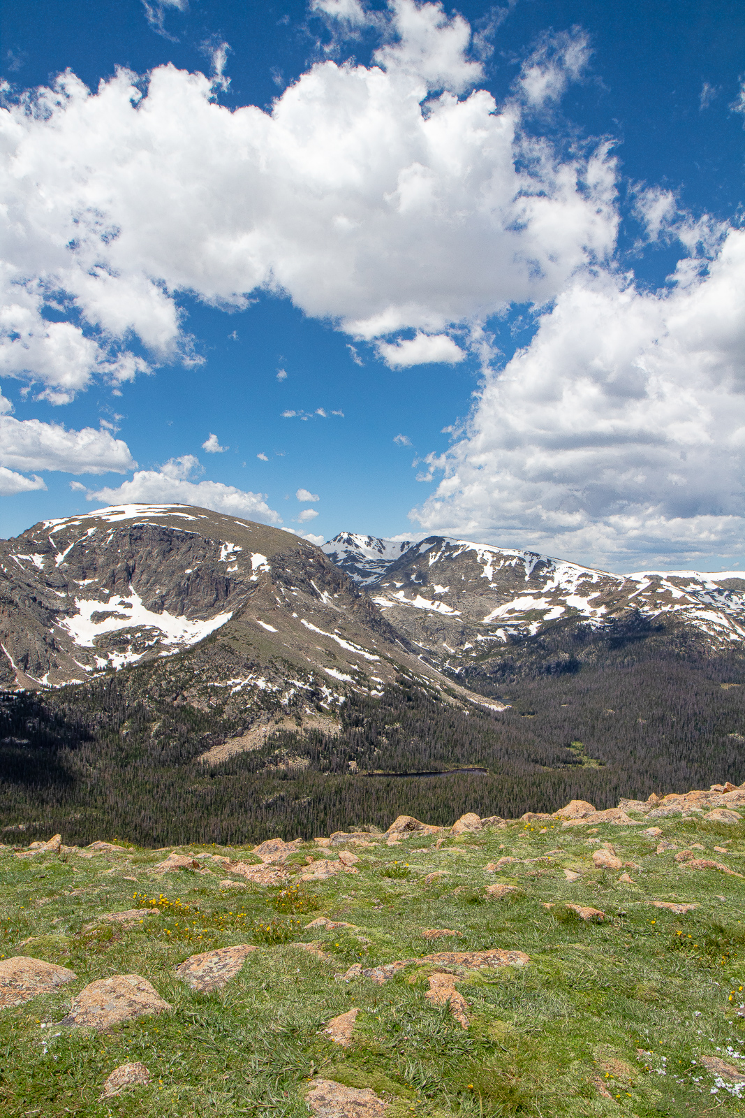 Forest Canyon Overlook on Trail Ridge Road in Rocky Mountain National Park