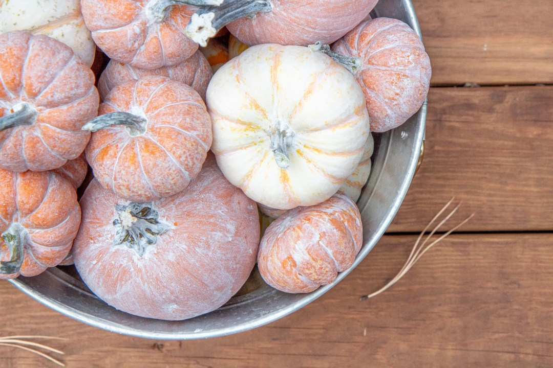Easy whitewashed pumpkins