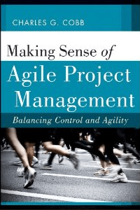 Read This Book: Making Sense of Agile – Balancing Control and Agility