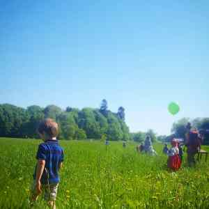 Een kleuterschool in het bos