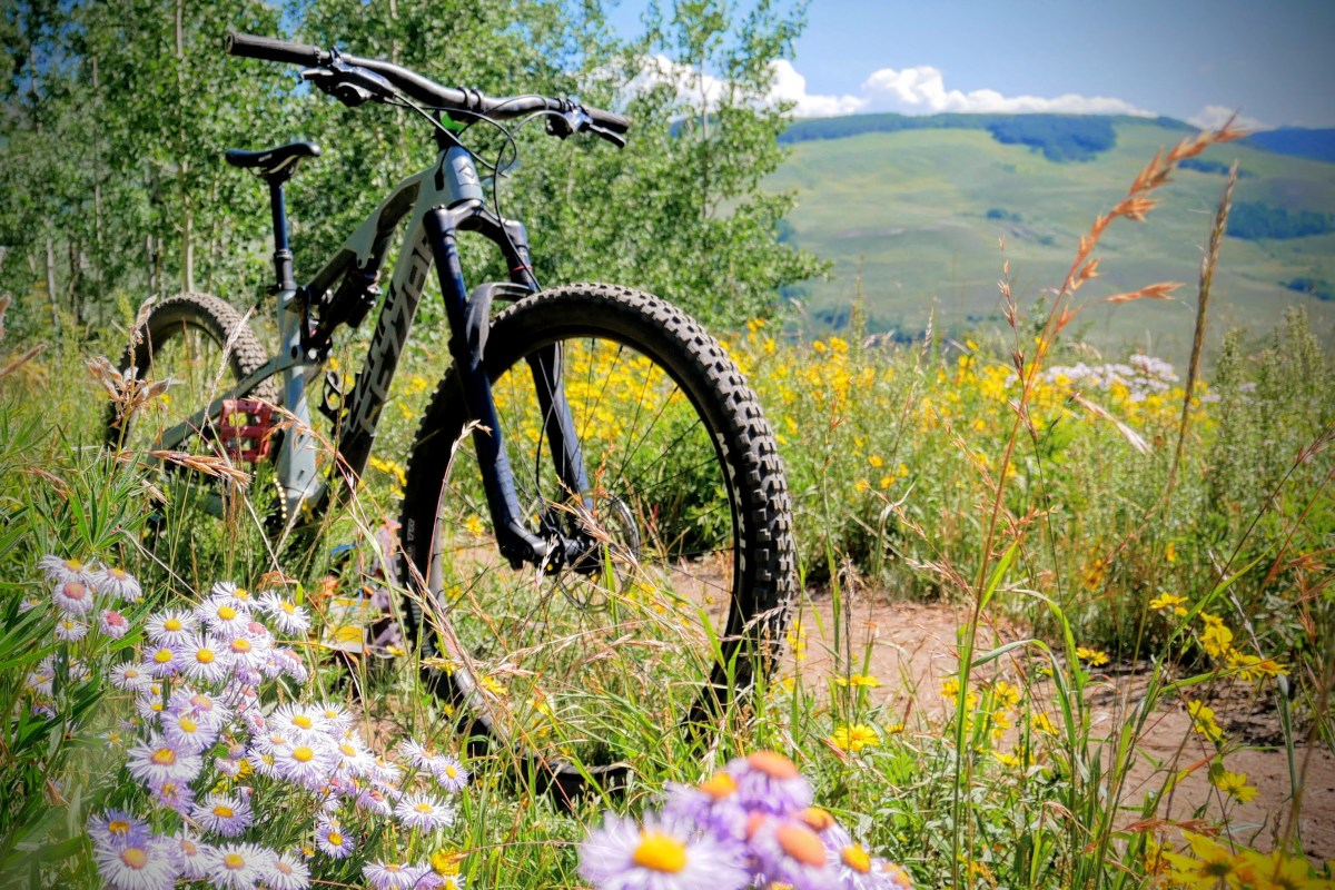 Everyday MTB - Mountain bike reviews you can trust