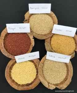 millet types