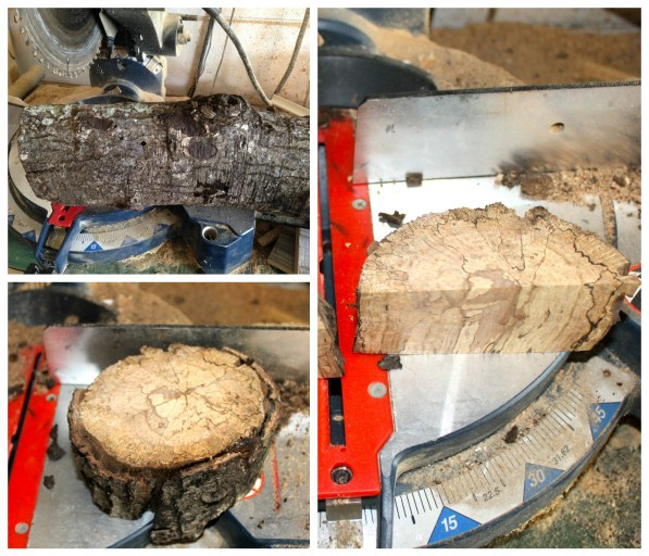 Firewood log on the miter saw