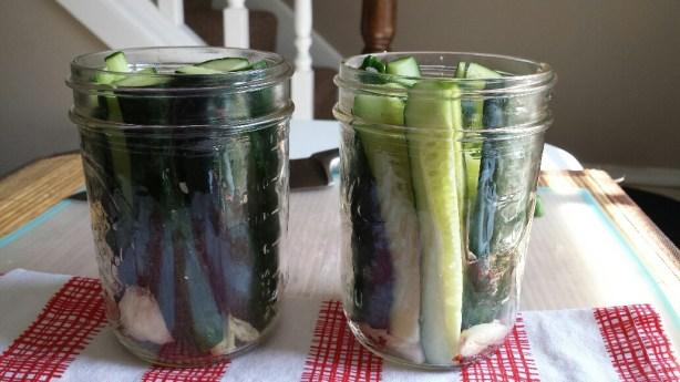 Pickles- in jar before liquid