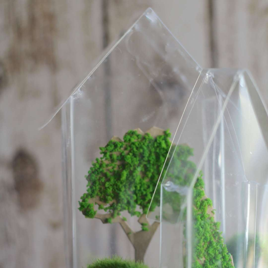 Everyday Party Magazine Tiny Greenhouse Decor