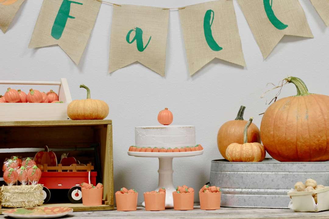 Everyday Party Magazine Little Pumpkin Party