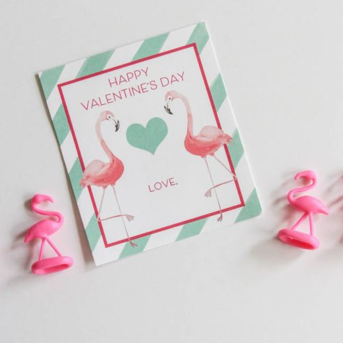 Everyday Party Magazine Flamingo Valentine's Day Treats
