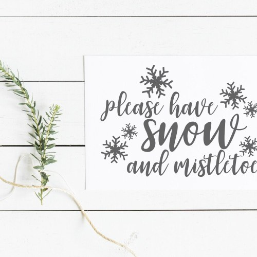 Please Have Snow and Mistletoe Holiday Sign