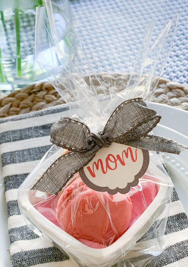 Mom Place Setting Tag Striped Napkins