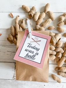Paper Bag Peanuts