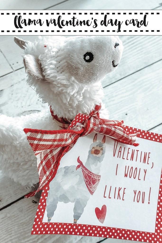 Llama Valentine's Day Gift