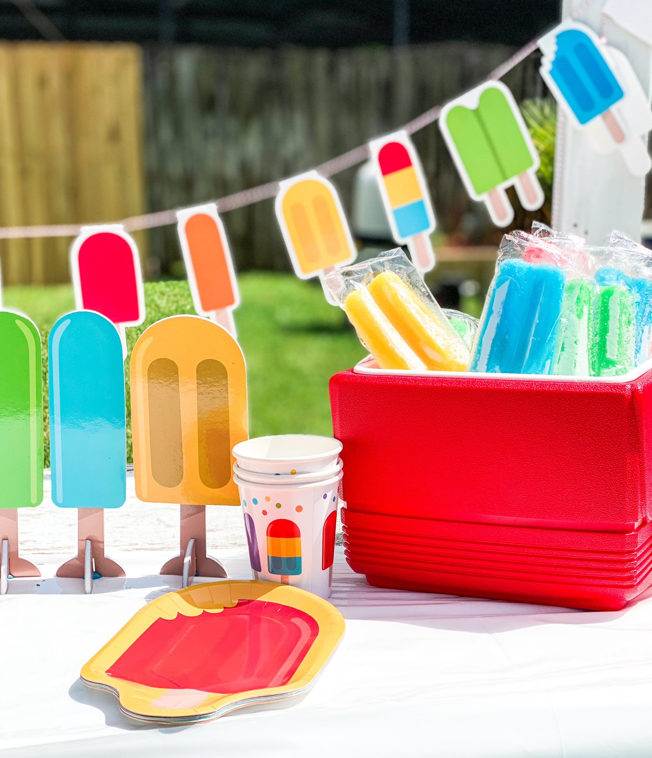 Popsicle Party Supplies