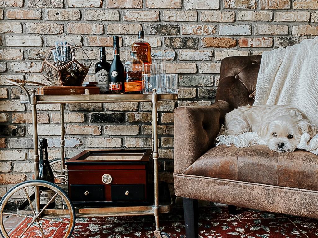 Bar Cart Shih Tzu Leather Chair