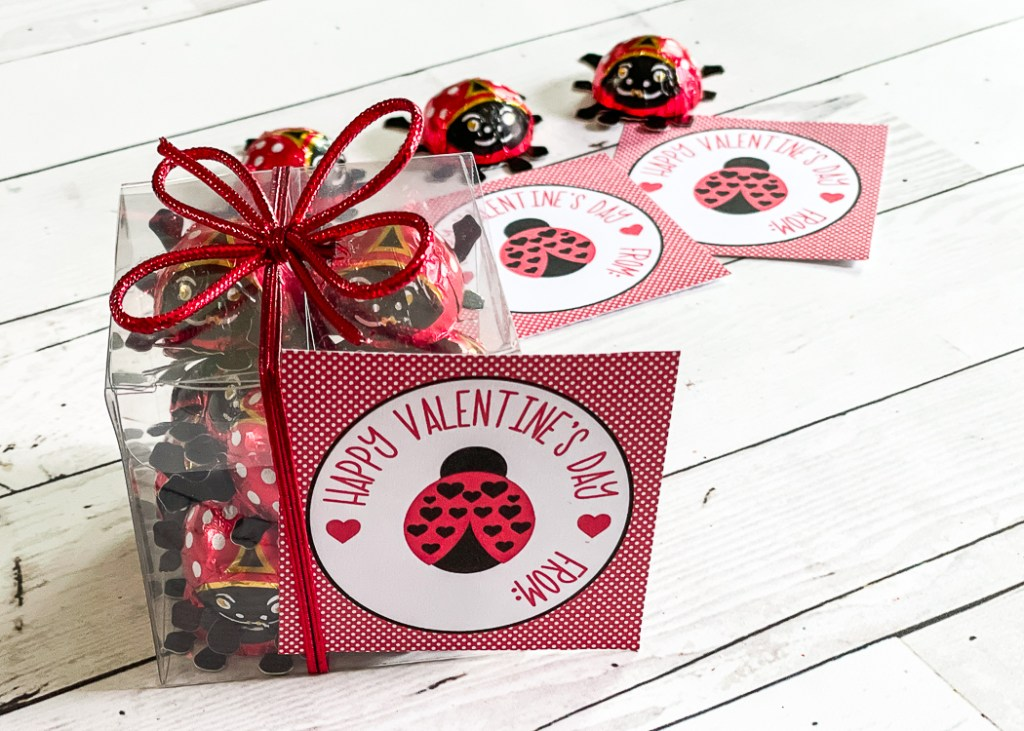 Printable Lady Bug Valentine's Day Cards