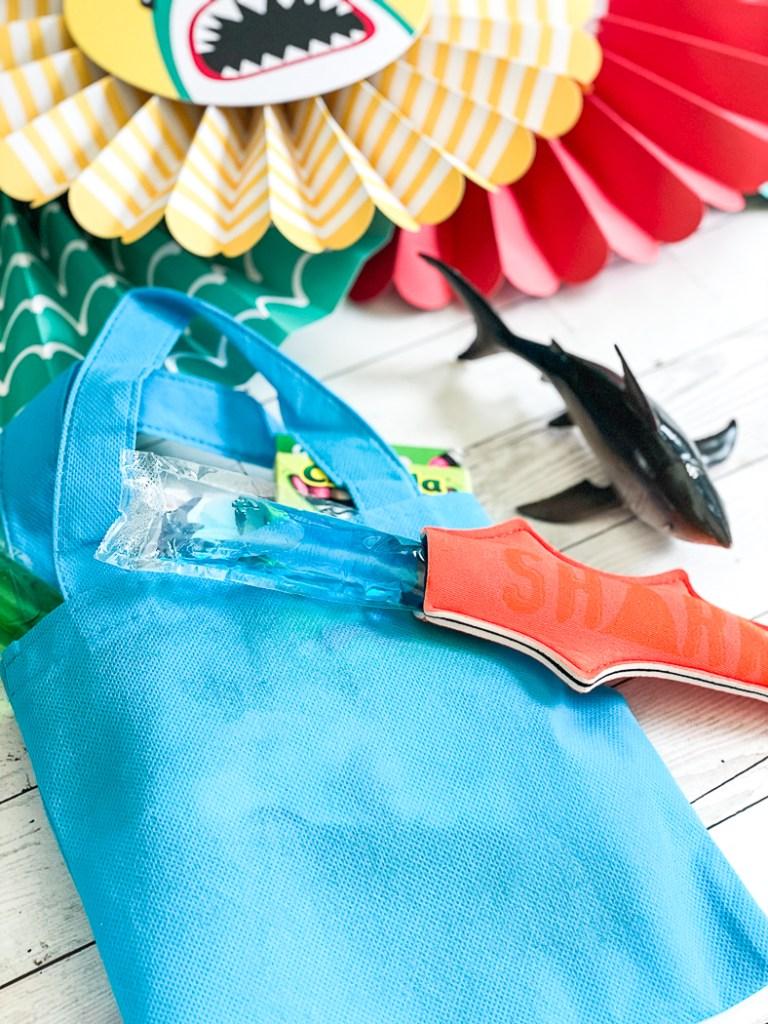 Kids Party Favor Bags