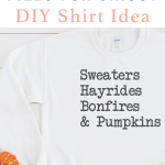 DIY Shirt Idea