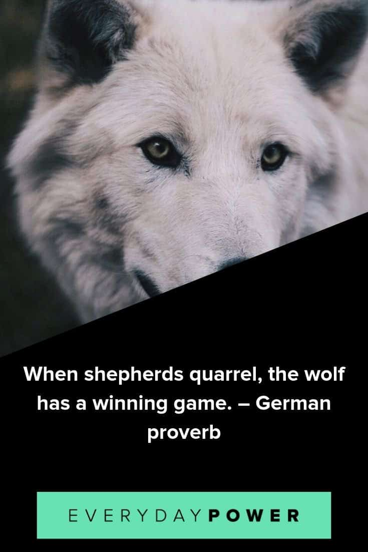 Wolf quotes that will make you smarter