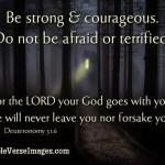 krag-Bybel-verse-4