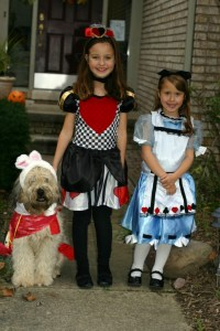 Family Halloween Costume Theme Ideas and More!