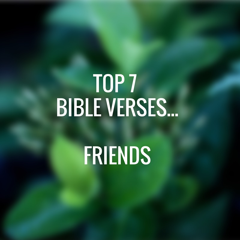 Top 7 Bible Verses Friends