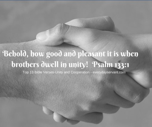 top 13 bible verses unity and cooperation everyday servant