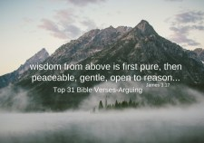 Top 31 Bible verses-Arguing
