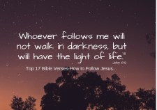 Top 17 Bible Verses-How to Follow Jesus