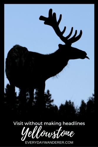 Visiting Yellowstone National Park #yellowstone #nationalpark #montana #wyoming