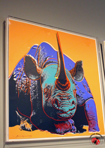 Pop Art rhino by Andy Warhol