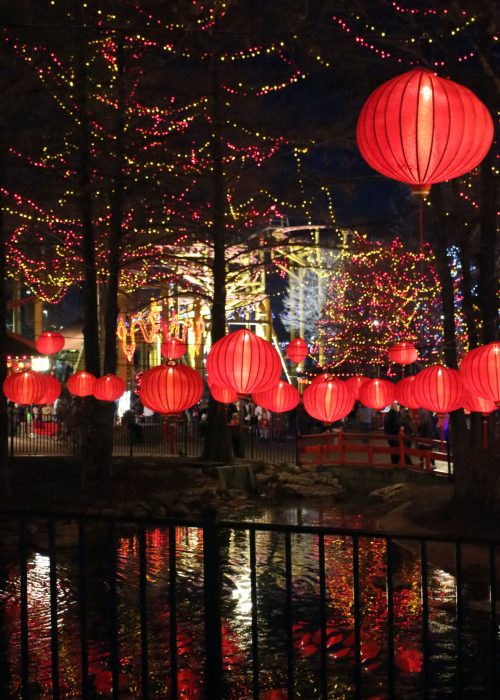 Red Paper Lanterns at Worlds of Fun's WinterFest
