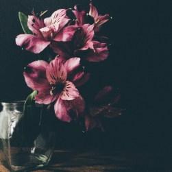 gfancy_purpleflower