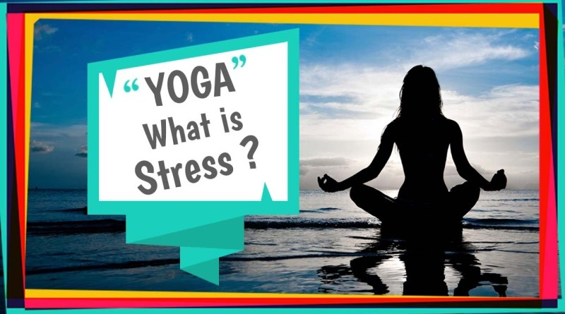 Yoga Tutorial: What is Stress?