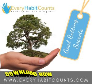 Every-Habit-Counts-Goal-Setting-Secrets (42)