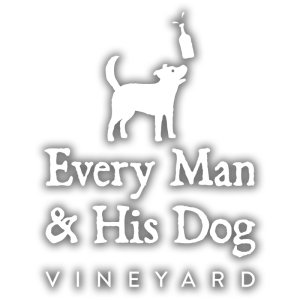 Every-Man-Logo-Vineyard-with-Bottle+shadow