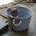 """Bolli in the bucket! (His mama calls him """"Bolli"""" because he's """"round like a bowl""""!)"""