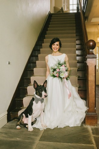 Hendrix the Bull Terrier looking dapper with Bride.