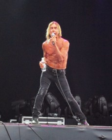 Iggy Pop at Hyde Park