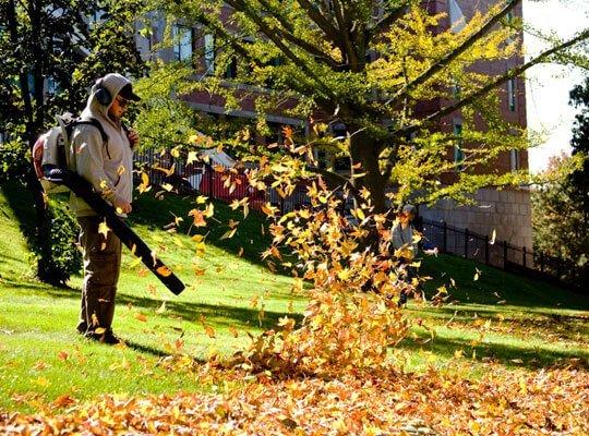 top 3 leaf blowers easy lawn