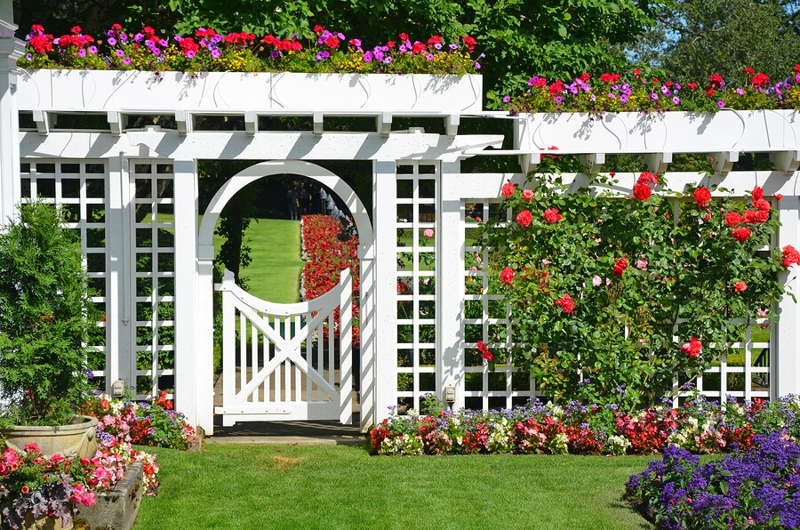 10 DIY Garden Trellis Ideas To Try Everything Backyard