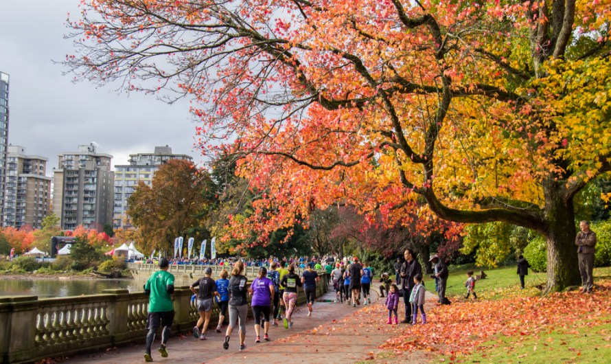 Race Preview: 47th James Cunningham Seawall Race