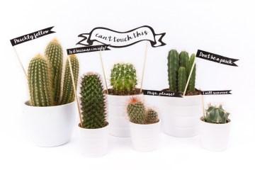 cactus printable