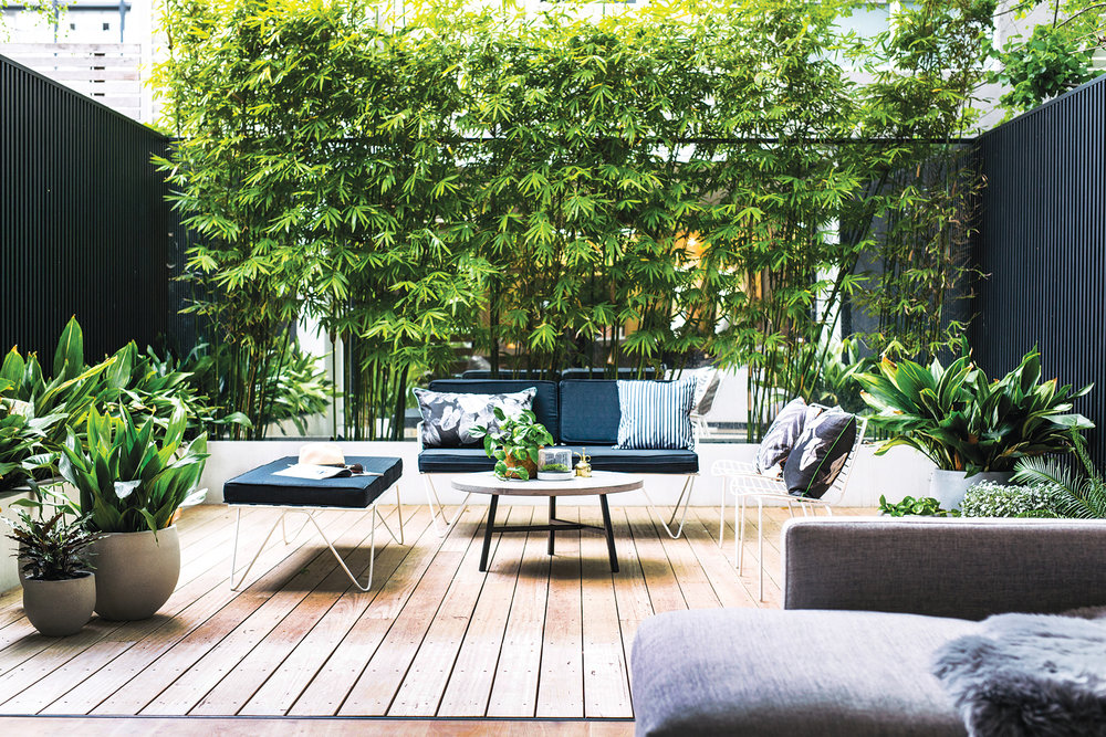 Spiegel Tuin Intratuin : De mooiste tuininspiratie met zwarte accenten