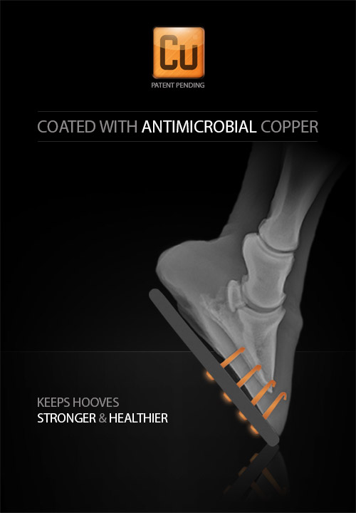 Coated with Antimicrobial Copper for stronger and healthier hooves!