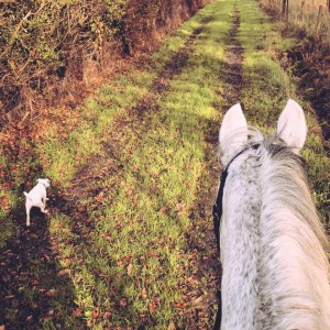 Harriet Upton - Out with Danny and Nutz the dog on a hack