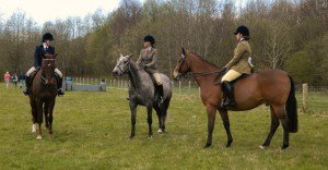 Horses - The lifestyle of a horse lover