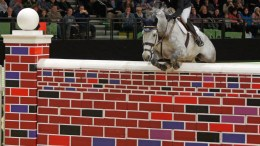 Puissance (at 7 feet 1 inch) Image credit Mike Bain