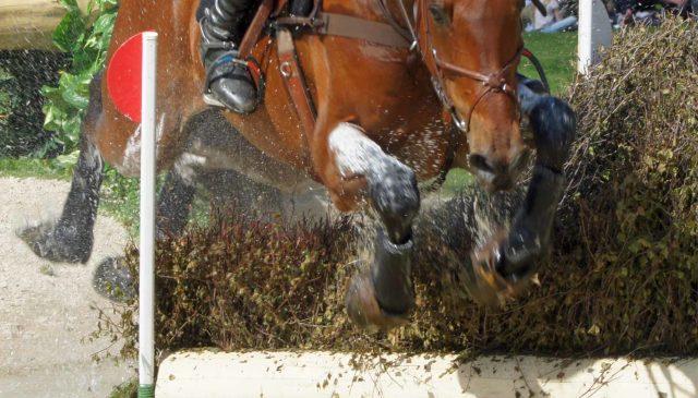 Understanding Fatigue in Horses Skipton Horse Trials
