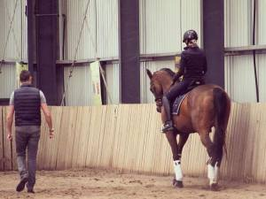 youth pathway coaching programme image The Stephen Hayes Dressage Clinic Tour 2016 has been a huge success